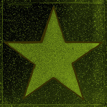 Hollywood, USA - June 26, 2012: empty star on Hollywood Walk of Fame in Hollywood, California. This star is located on Hollywood Blvd. and is one of 2400 celebrity stars.